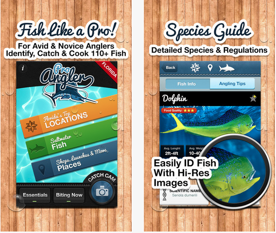A brilliant app for your florida fishing trip yacht for Florida fishing app