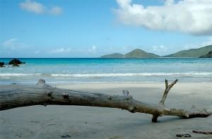 Tropical Island Paradise in the Caribbean