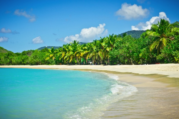 Sandy beaches lined with palm trees on Tortola, British Virgin Islands