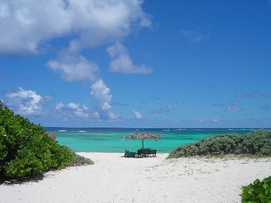 loblolly-beach