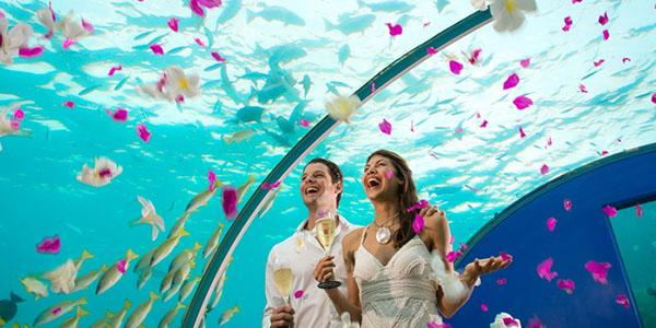 CN_weddingunderwater011_45_700x525_FitToBoxSmallDimension_Center