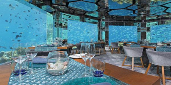 Sea-underwater-restaurant-255