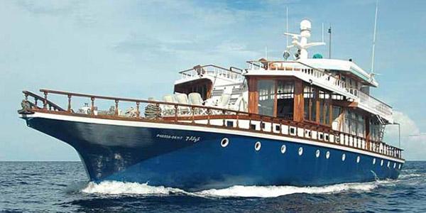 big_sultan-of-maldi_blogsize