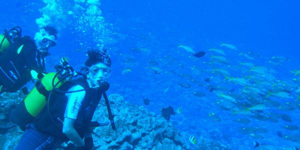 borabora_diving_photobyantonioguerra