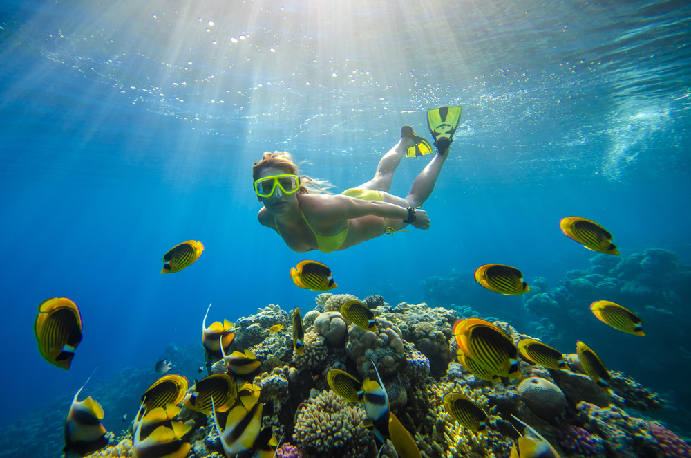 BVI Snorkeling and Diving